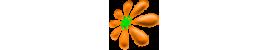 Цветочная точка - садовые цветы и кустарники